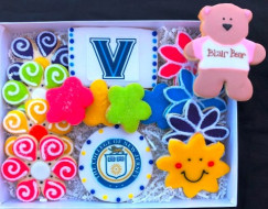 College-of-NJ-Blair-Bear-box